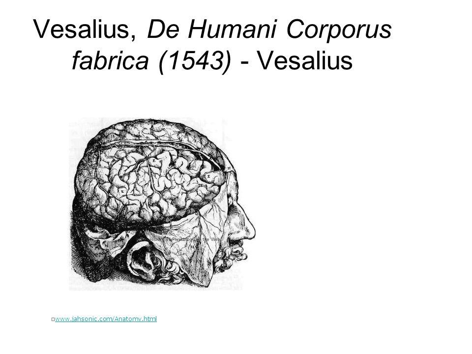 Vesalius, De Humani Corporus fabrica (1543) - Vesalius