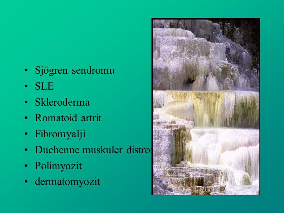 Sjögren sendromu SLE. Skleroderma. Romatoid artrit. Fibromyalji. Duchenne muskuler distrofi. Polimyozit.