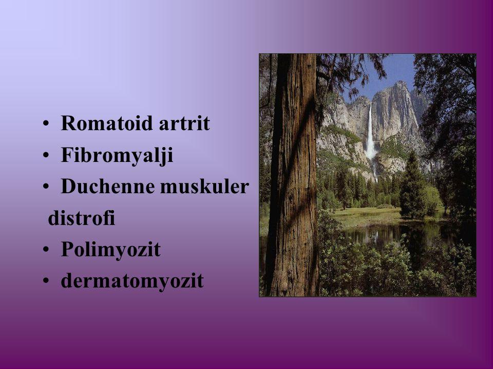Romatoid artrit Fibromyalji Duchenne muskuler distrofi Polimyozit dermatomyozit