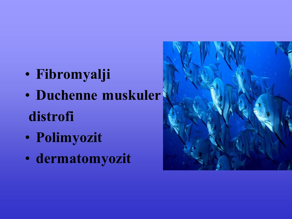 Fibromyalji Duchenne muskuler distrofi Polimyozit dermatomyozit