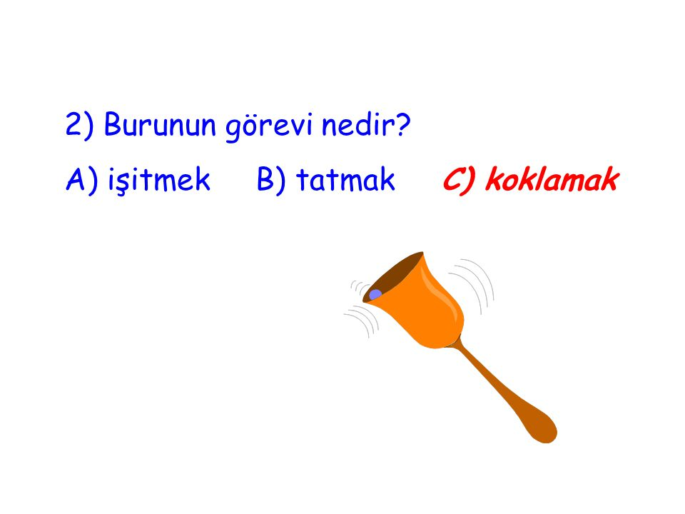 2) Burunun görevi nedir A) işitmek B) tatmak C) koklamak