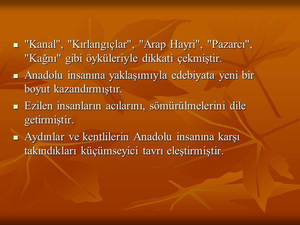 Kanal , Kırlangıçlar , Arap Hayri , Pazarcı , Kağnı gibi öyküleriyle dikkati çekmiştir.