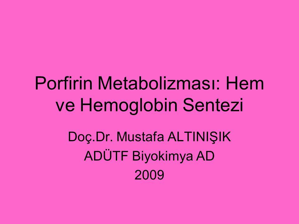 Porfirin Metabolizması: Hem ve Hemoglobin Sentezi