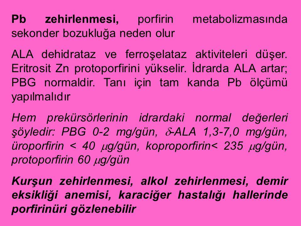 Pb zehirlenmesi, porfirin metabolizmasında sekonder bozukluğa neden olur