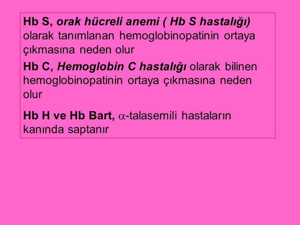 Hb S, orak hücreli anemi ( Hb S hastalığı) olarak tanımlanan hemoglobinopatinin ortaya çıkmasına neden olur