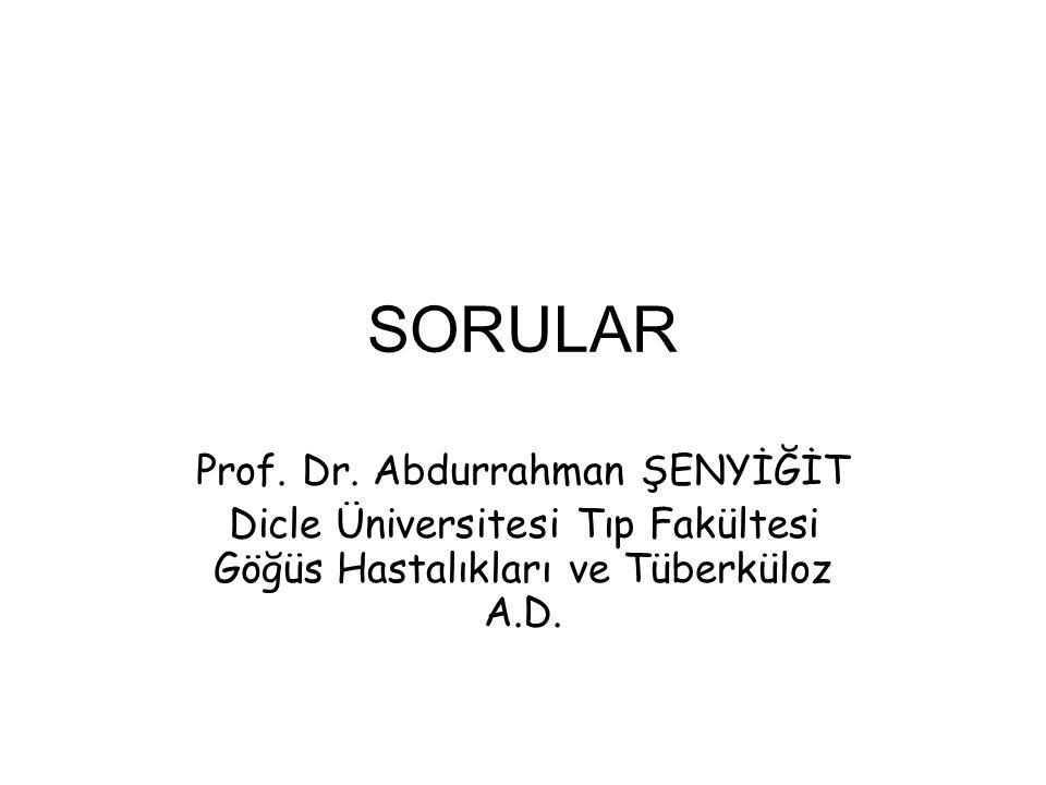 SORULAR Prof. Dr. Abdurrahman ŞENYİĞİT