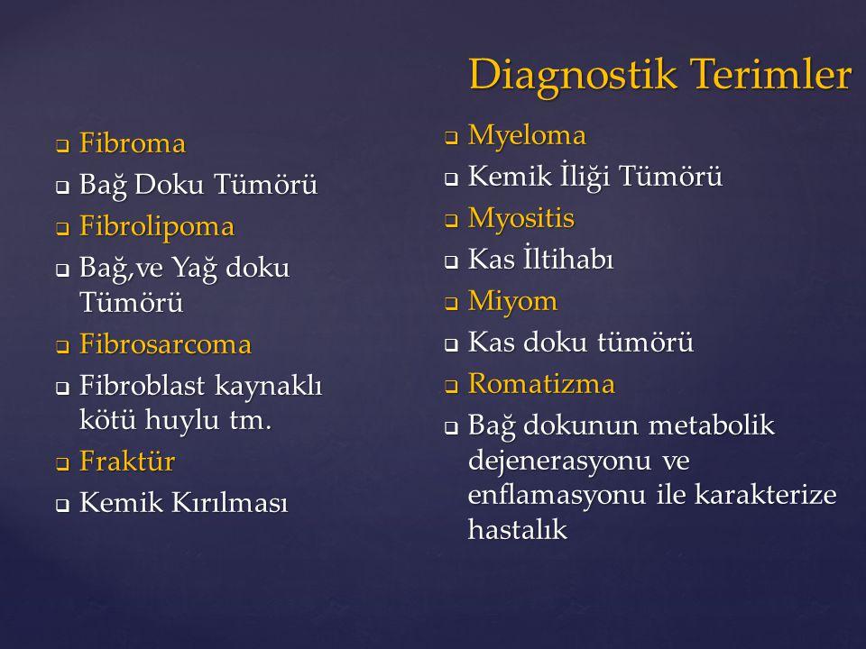 Diagnostik Terimler Myeloma Kemik İliği Tümörü Fibroma Myositis