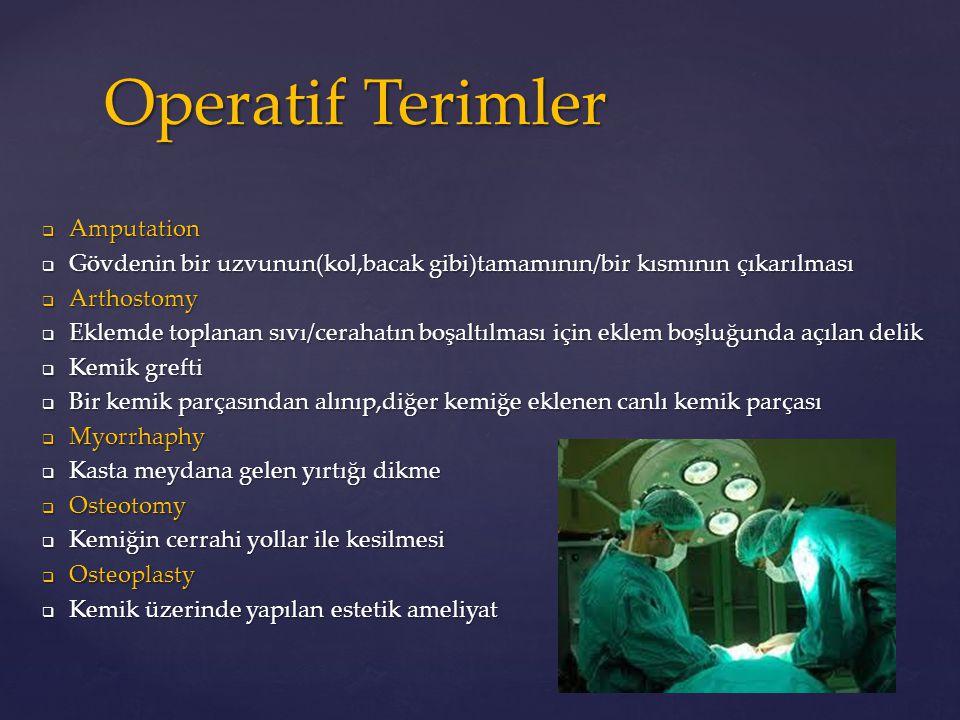 Operatif Terimler Amputation
