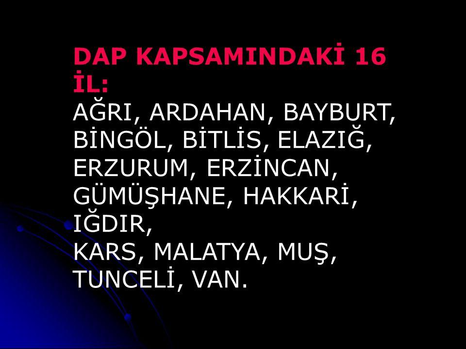 DAP KAPSAMINDAKİ 16 İL: AĞRI, ARDAHAN, BAYBURT, BİNGÖL, BİTLİS, ELAZIĞ, ERZURUM, ERZİNCAN, GÜMÜŞHANE, HAKKARİ, IĞDIR,