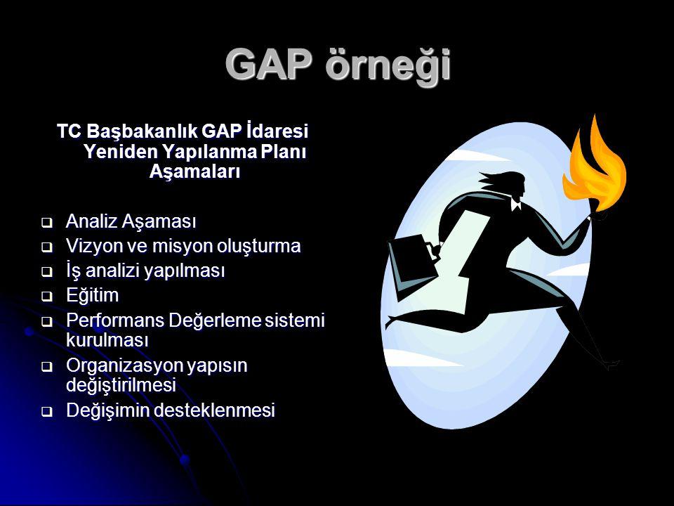 TC Başbakanlık GAP İdaresi Yeniden Yapılanma Planı Aşamaları