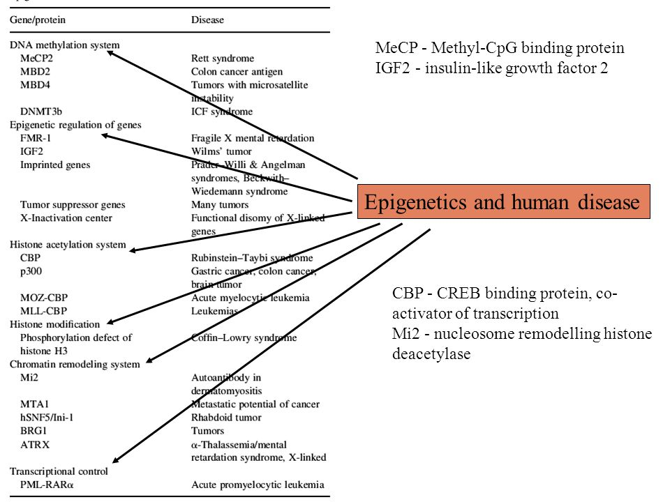 Epigenetics and human disease
