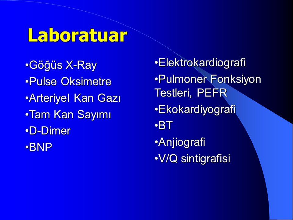 Laboratuar Elektrokardiografi Göğüs X-Ray