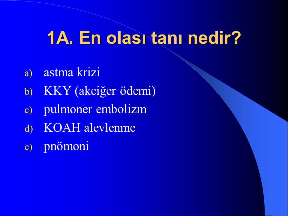 1A. En olası tanı nedir astma krizi KKY (akciğer ödemi)