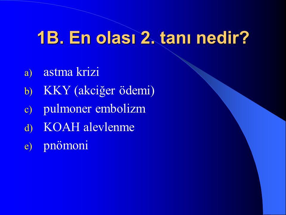 1B. En olası 2. tanı nedir astma krizi KKY (akciğer ödemi)