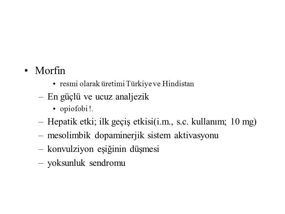 Morfin En güçlü ve ucuz analjezik
