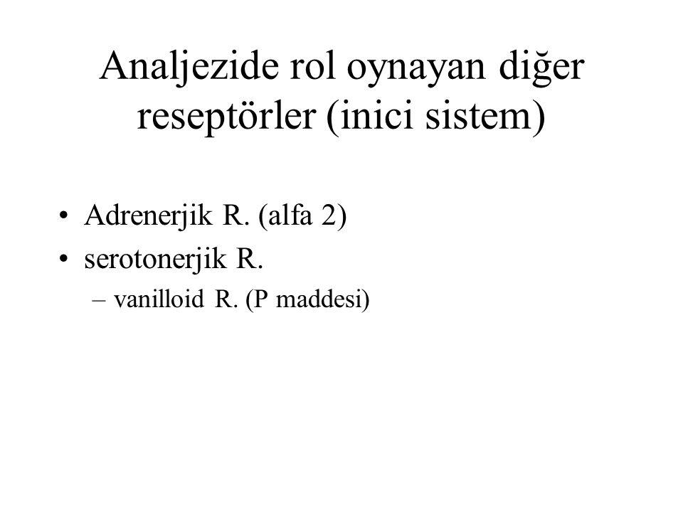 Analjezide rol oynayan diğer reseptörler (inici sistem)