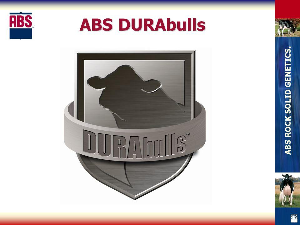 ABS DURAbulls