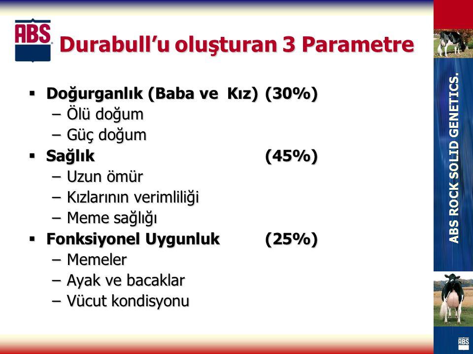 Durabull'u oluşturan 3 Parametre