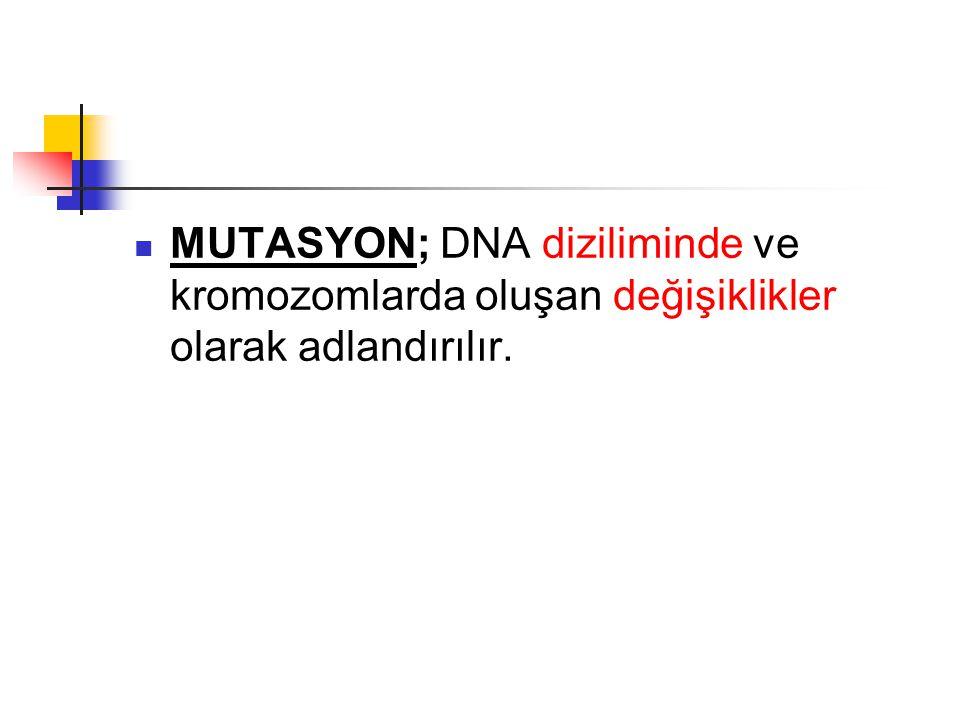 MUTASYON; DNA diziliminde ve kromozomlarda oluşan değişiklikler olarak adlandırılır.