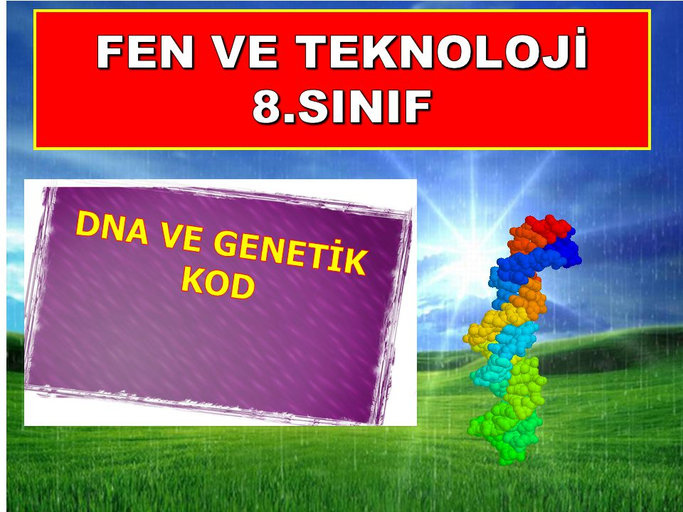 FEN VE TEKNOLOJİ 8.SINIF DNA VE GENETİK KOD