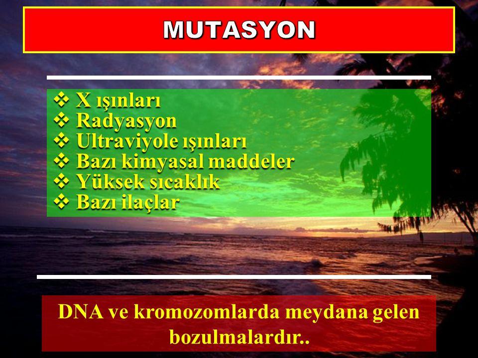 DNA ve kromozomlarda meydana gelen bozulmalardır..