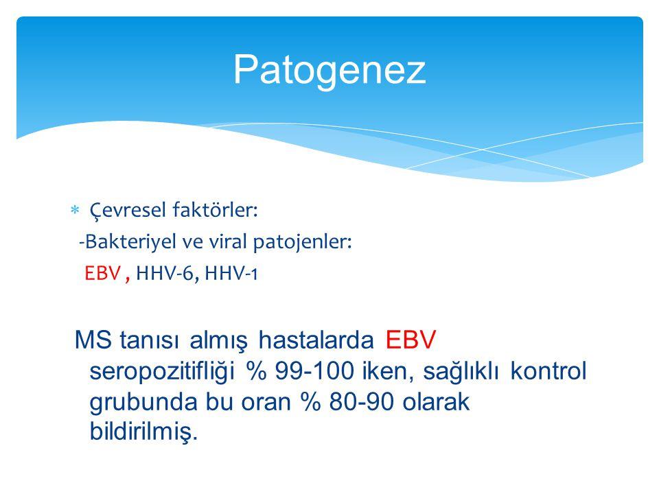 Patogenez Çevresel faktörler: -Bakteriyel ve viral patojenler: