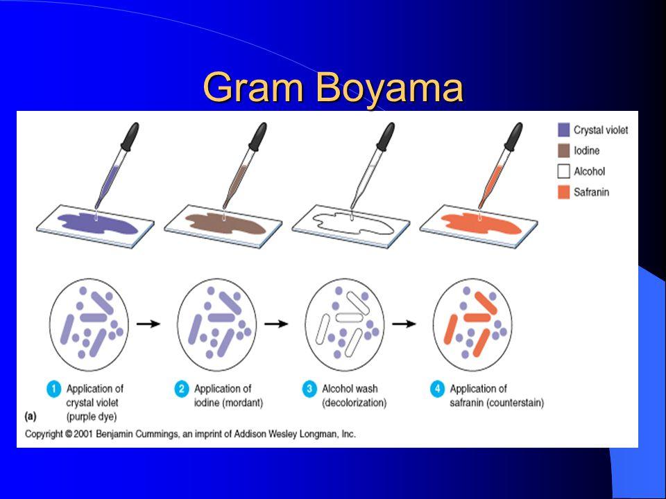 Gram Boyama