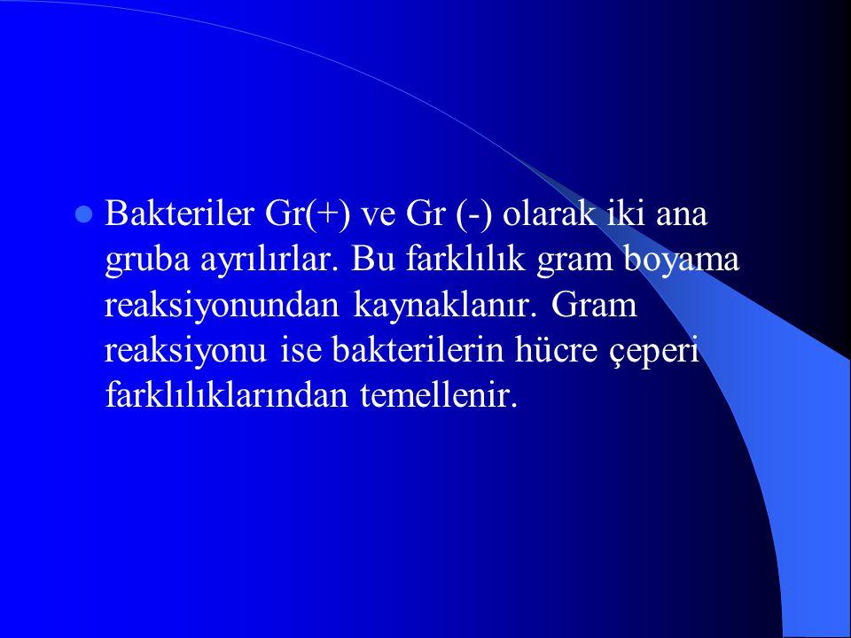 Bakteriler Gr(+) ve Gr (-) olarak iki ana gruba ayrılırlar