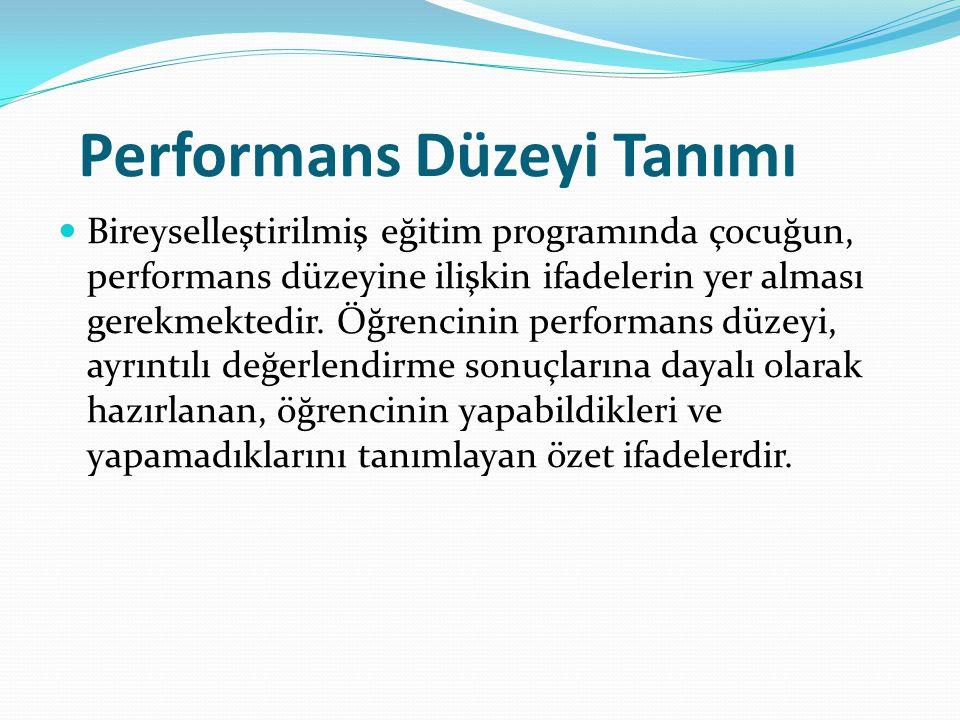 Performans Düzeyi Tanımı