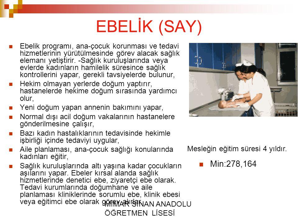 EBELİK (SAY)