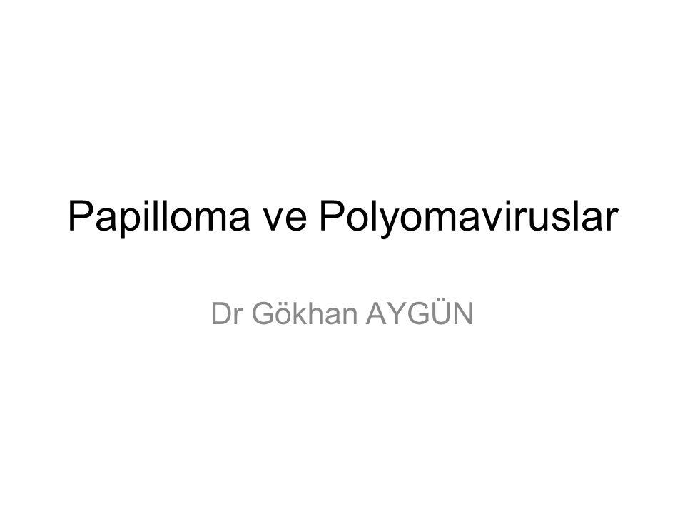 Papilloma ve Polyomaviruslar