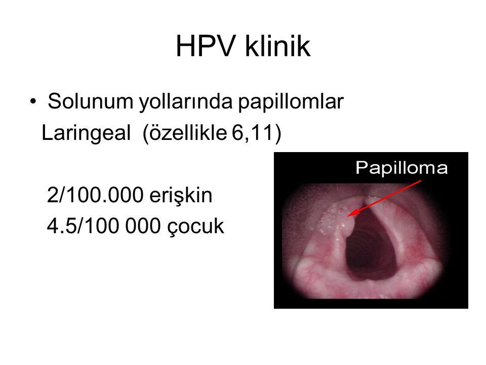 HPV klinik Solunum yollarında papillomlar Laringeal (özellikle 6,11)