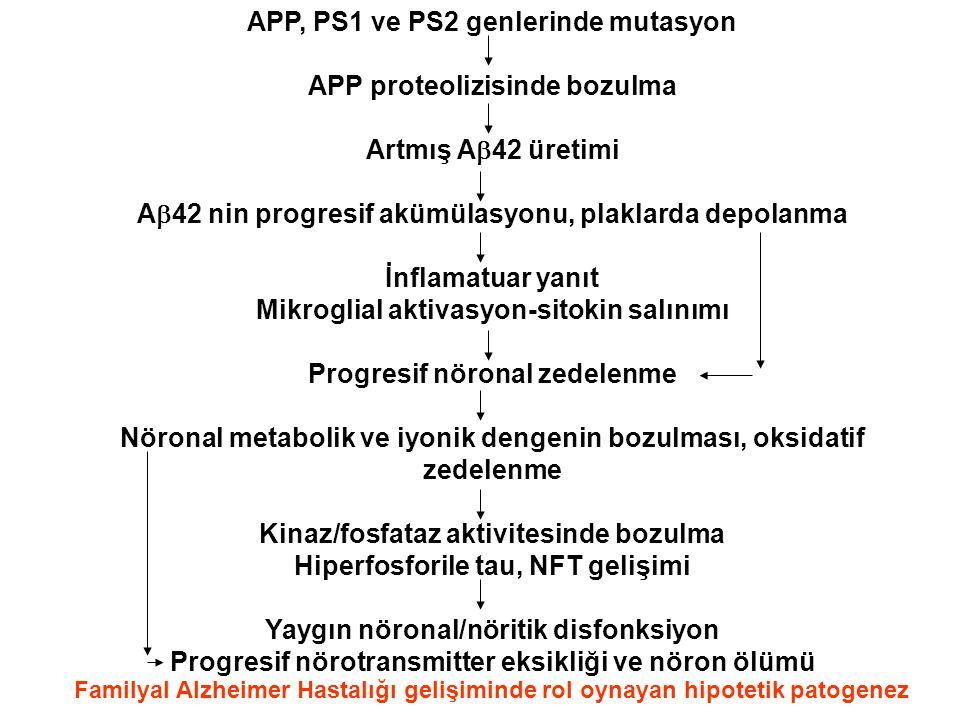 APP, PS1 ve PS2 genlerinde mutasyon APP proteolizisinde bozulma