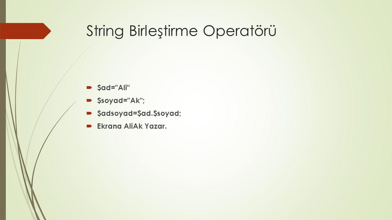 String Birleştirme Operatörü