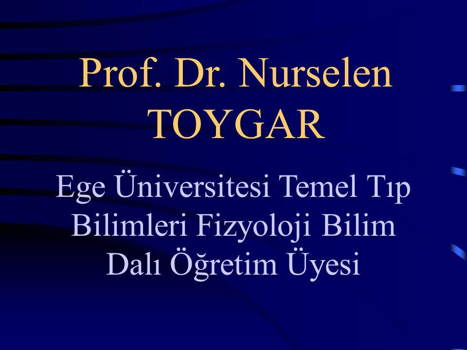 Prof. Dr. Nurselen TOYGAR