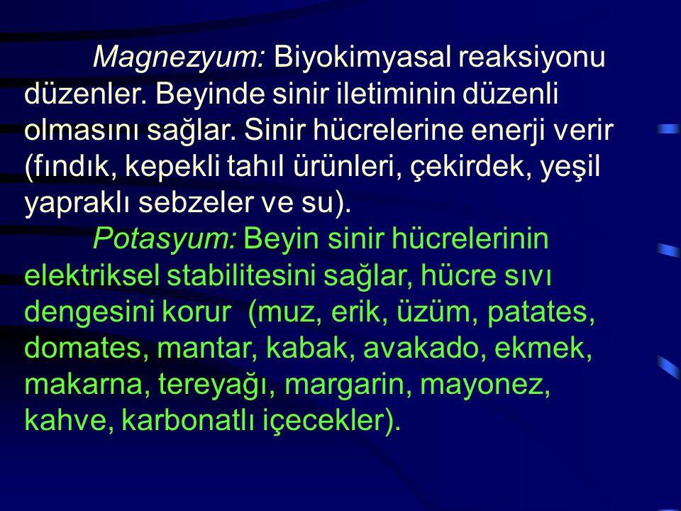 Magnezyum: Biyokimyasal reaksiyonu düzenler