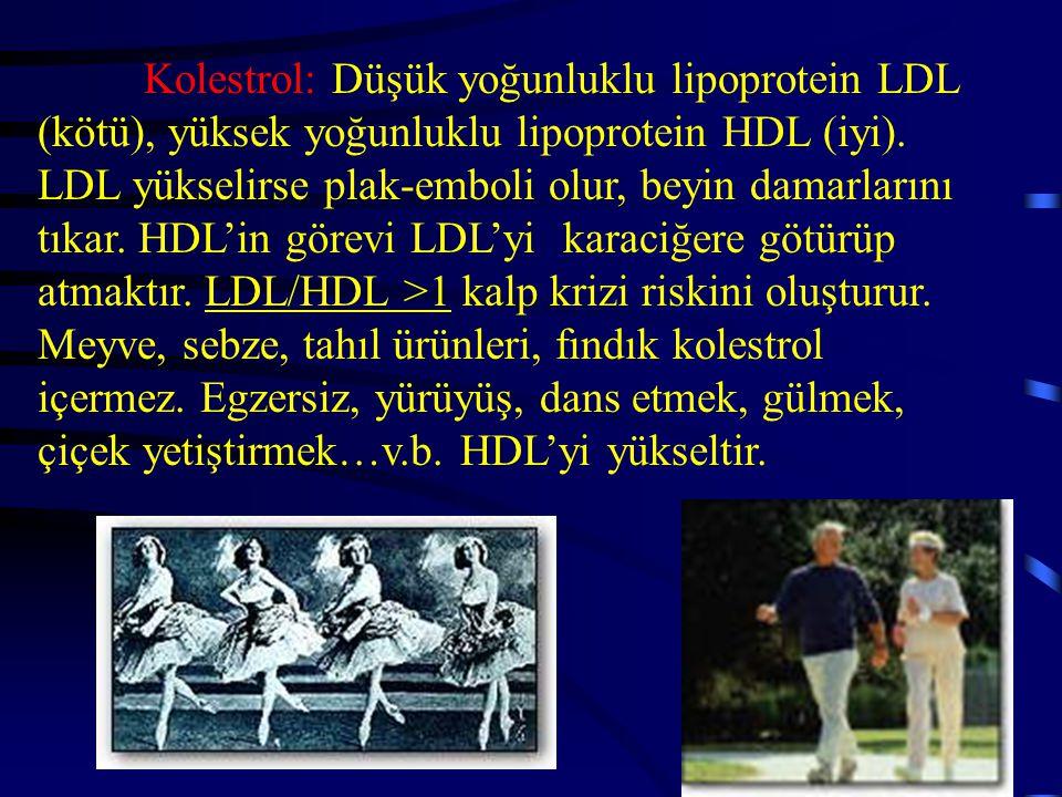 Kolestrol: Düşük yoğunluklu lipoprotein LDL (kötü), yüksek yoğunluklu lipoprotein HDL (iyi).