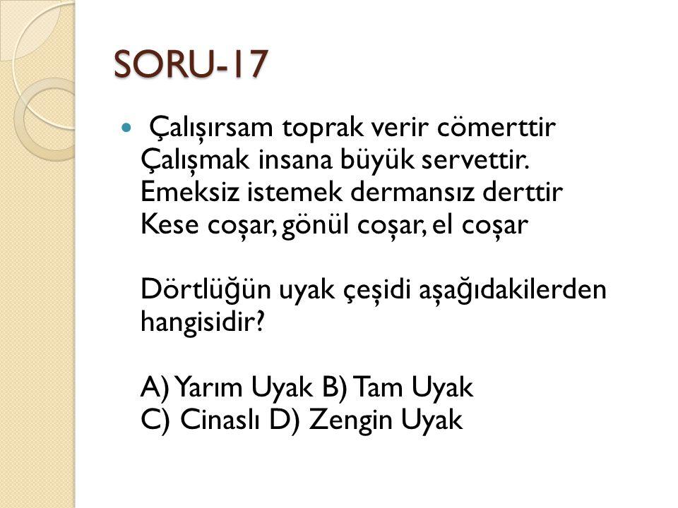 SORU-17