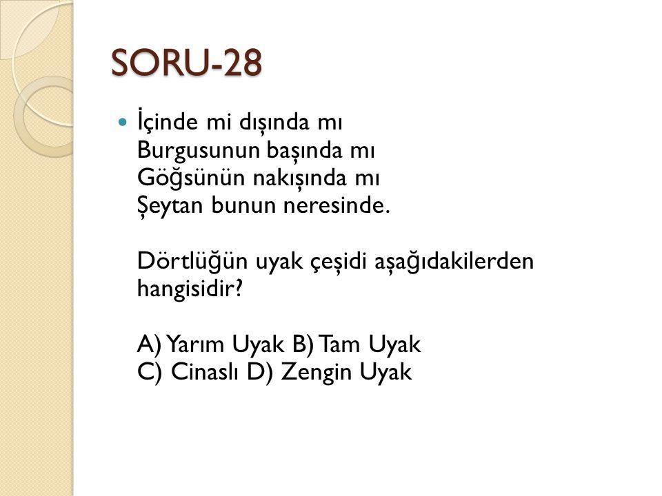 SORU-28