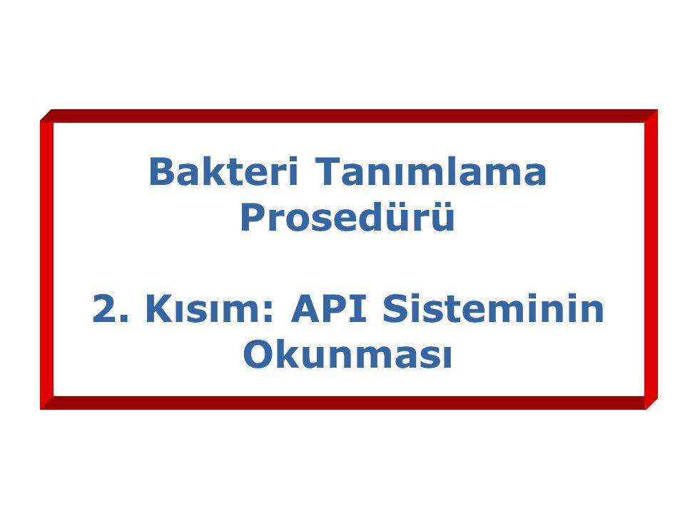 Bakteri Tanımlama Prosedürü 2. Kısım: API Sisteminin Okunması