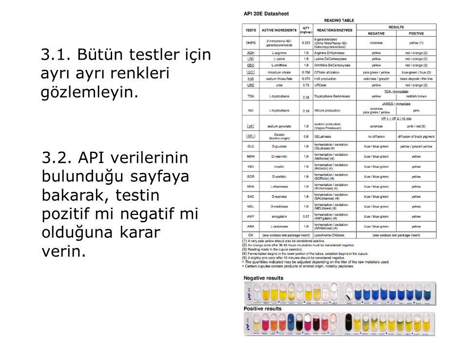 3.1. Bütün testler için ayrı ayrı renkleri gözlemleyin.