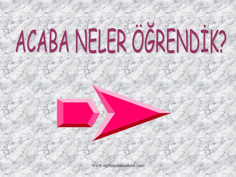 ACABA NELER ÖĞRENDİK www.egitimcininadresi.com