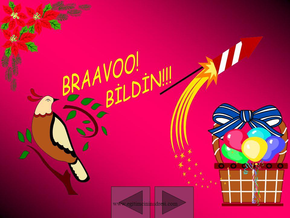 BRAAVOO! BİLDİN!!! www.egitimcininadresi.com
