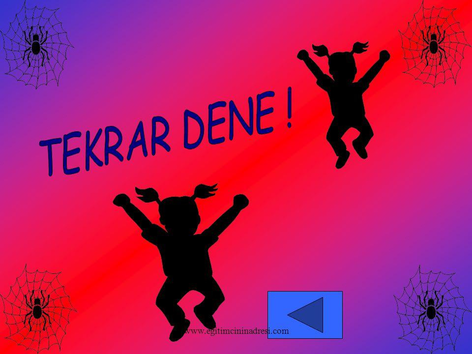 TEKRAR DENE ! www.egitimcininadresi.com