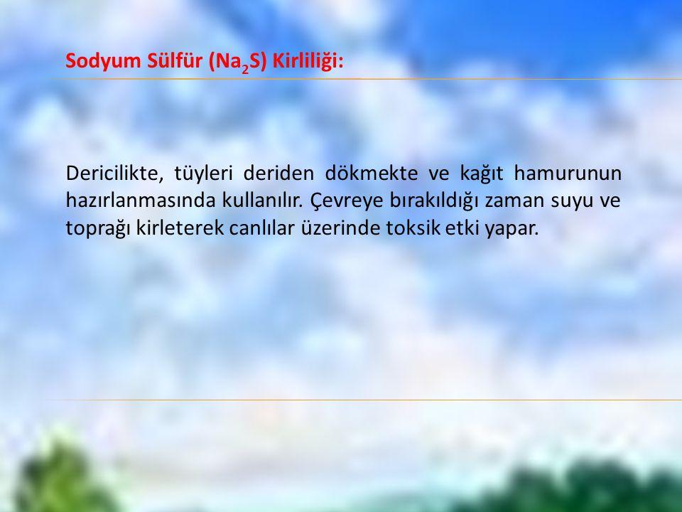 Sodyum Sülfür (Na2S) Kirliliği: