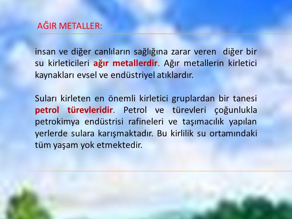 AĞIR METALLER: