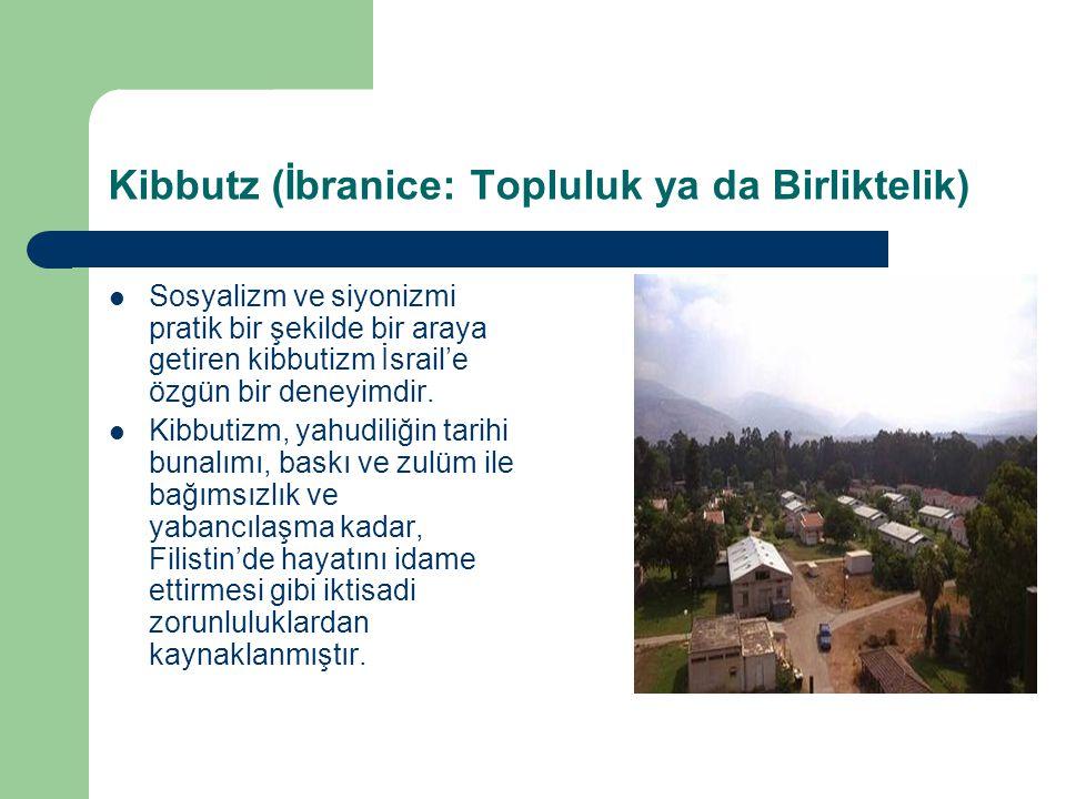 Kibbutz (İbranice: Topluluk ya da Birliktelik)