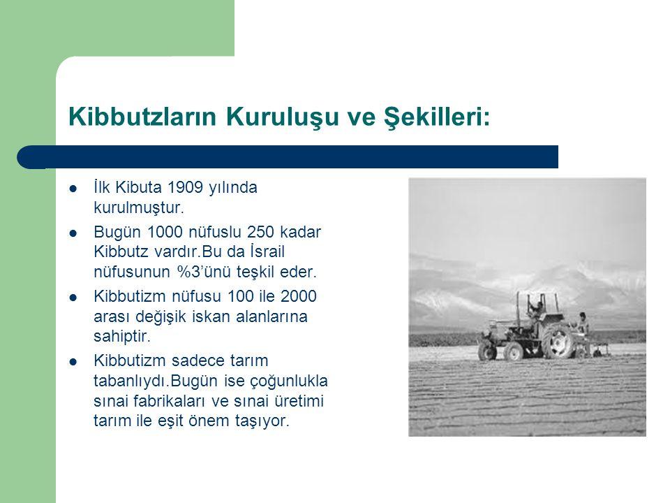 Kibbutzların Kuruluşu ve Şekilleri: