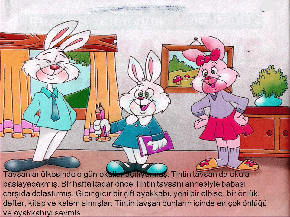 Tavşanlar ülkesinde o gün okullar açılıyormuş