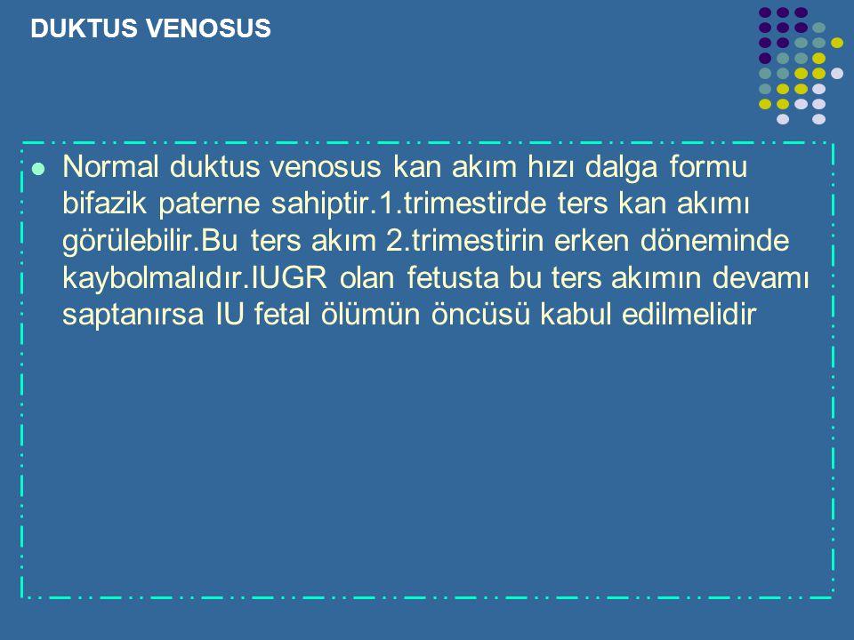 DUKTUS VENOSUS